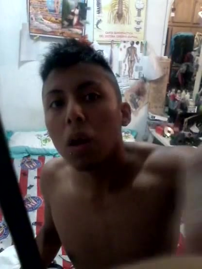 Pau brasil gay